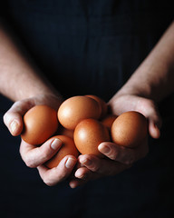 A man holds chicken fresh organic eggs. Close up. Toned picture