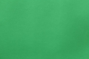 surface of green art paper background. Wall mural