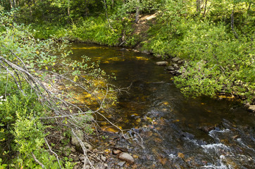 Small mountains creek