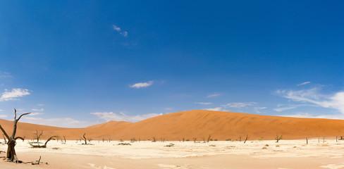 Weite der Wüste