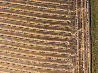 Wall Mural - Aerial view of the field after harvest. Rows of straw on an agricultural field. Ecological biofuel and fertilizer for work in the field.