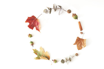 Autumn maple, eucalyptus and oak leaves laid on a white table background. Fall circle composition. Flat lay, top view.