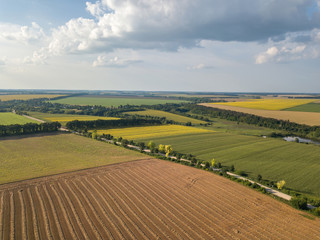 Wall Mural - Summer countryside landscape with agricultural fields with organic crops and after harvesting against blue cloudy sky. Aerial view from drone.