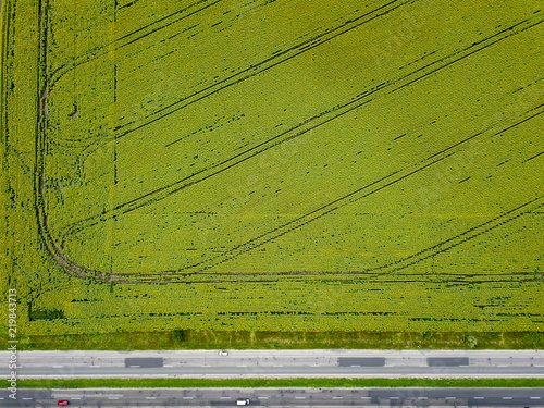 Wall mural Aerial view from a drone on an agricultural field with a rural road along the field and cars on it. The view is strictly from above.