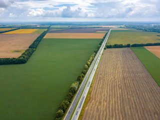Wall Mural - Aerial view from drone of road through beautiful green field in the evening in summer.