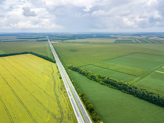 Wall Mural - Panoramic aerial view from drone of a highway with cars on it, fields, tree planting at summer sunset.