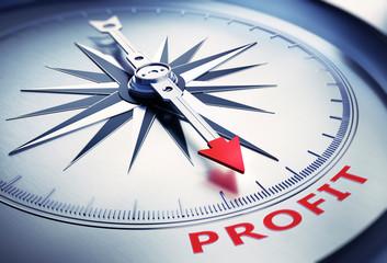 Kompass silber Profit rot