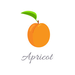 Apricot icon with title