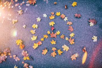 Peace Autumn Background Leaf