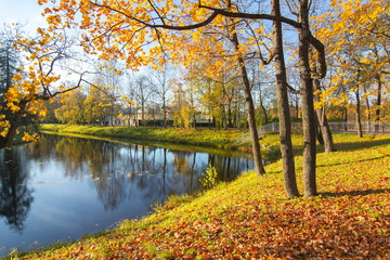 Golden Fall in Catherine park, Tsarskoe Selo (Pushkin), Saint Petersburg, Russia