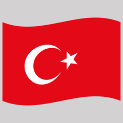 turkey flag on gray background vector illustration