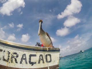 Curacao Views in the caribbean