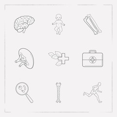 Set of medicine icons line style symbols with baby, herbal medicine, spleen and other icons for your web mobile app logo design.