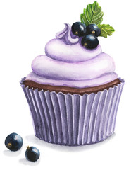 watercolor Illustration of black currant cupcake