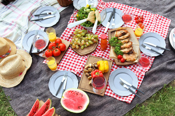 Aluminium Prints Picnic Blanket with food prepared for summer picnic outdoors