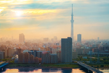 Aluminium Prints Asian Famous Place Scenic view of the city of tokyo, the capital city of Japan in twilight