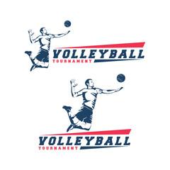 volleyball player logo