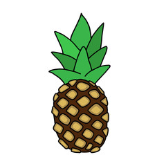 Exotic pineapple fruit. Hand drawn illustration vector.