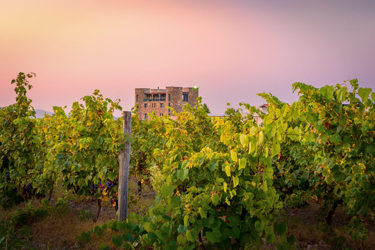 Beautiful Chateau in Vineyards near Sopot, Plovdiv Province, Bulgaria