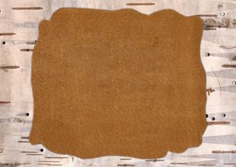 Piece of leather on the birch bark background