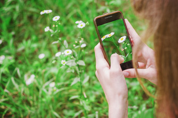 Teen girl takes pictures of a daisy flower on a smartphone, close-up, open air, copyspace