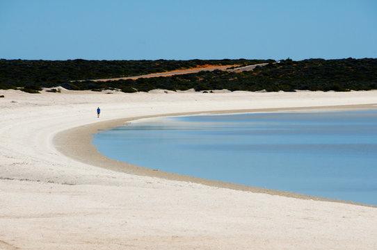 Shell Beach - Shark Bay - Western Australia