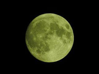 明日は満月、月齢14の月