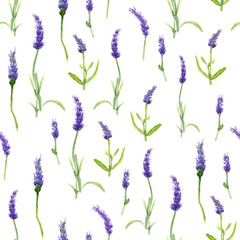 Botany illustration Lavender flowers in a watercolor style on white background. Seamless watercolor pattern. Could be used for textile or in design