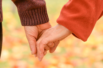 Two people holding hands at the nature autumn close up