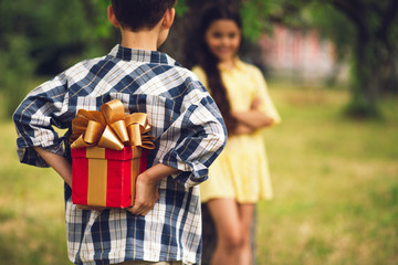 Cute boy preparing to give present to sweet girl. Little boy wearing blue and white button up shirt holding big wrapped gift behind his back to give to girl.