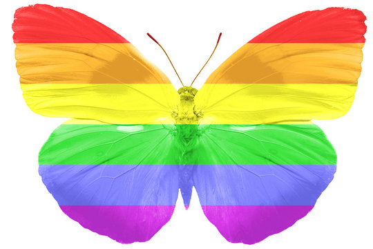 flag of LGBT on the wings of a butterfly. isolated on white background