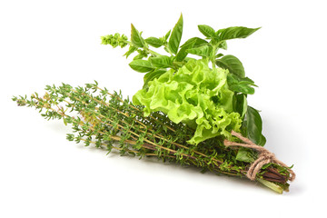 Fresh spices and herbs bouquet, isolated on white background. Dill, lettuce, thyme, sage. Isolated on white background.