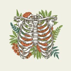 Floral vintage rib cage illustration. Floral anatomy.