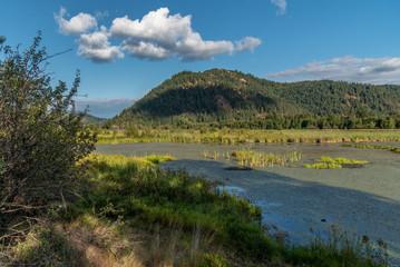 Thompson Lake Wildlife Refuge. Harrison, Idaho