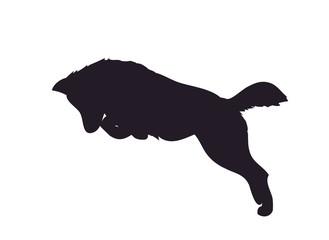 wolf runs, image silhouette, vector