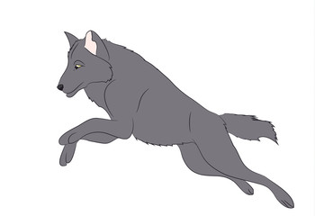 wolf runs, image color, vector