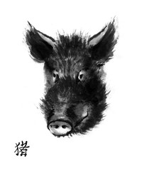 "Pig sumi-e illustration. Head of wild boar oriental ink wash painting with Chinese hieroglyph ""pig"". Symbol of the eastern new year."