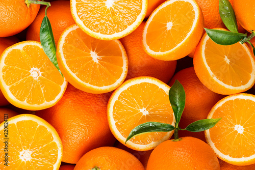Wall mural slices of citrus fruits - oranges