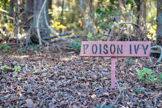 Poison Ivy Warning Sign