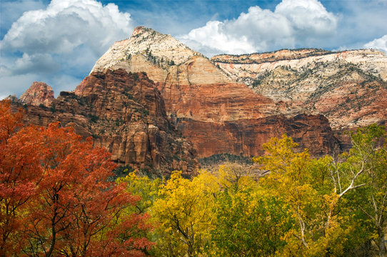 Observation Point, as viewed from the Grotto, hosts a palette of rich fall and sandstone colors in Zion National Park.