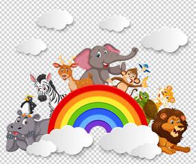 Animal on the rainbow