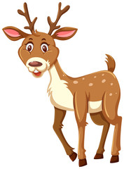 A cute deer on white background