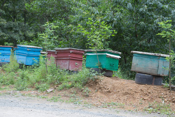 Wooden colorful beehives in a row are placed on tire construction lifted off the ground
