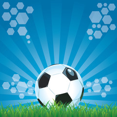 Football ball on green grass field stadium blue background
