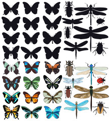 vector, isolated, insects, butterflies, beetles, dragonflies, set