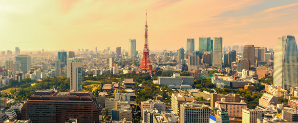 Panorama view of Tokyo skyline at sunset , Japan