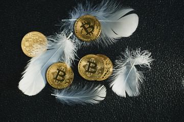 Bitcoin 金貨 仮想通貨 ゴールド 羽根