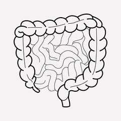 Intestine icon line element. Vector illustration of intestine icon line isolated on clean background for your web mobile app logo design.
