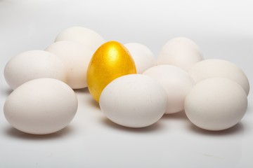 Ten White Eggs and One Gold Egg on Grey Backround