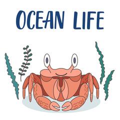 Ocean crab cartoon illustration with seaweeds around.